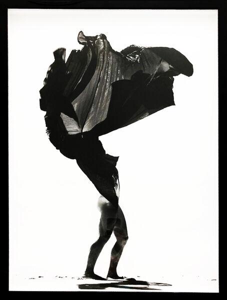 Guilherme Licurgo, 'Desert Flower', 2011