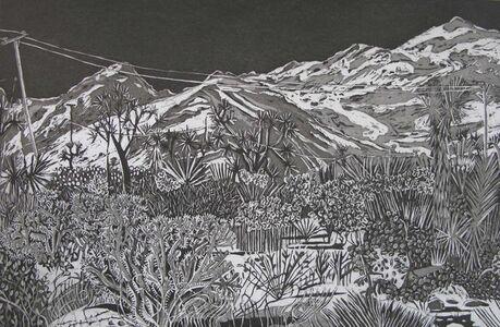 Kate Crook, 'Joshua Tree #7', 2017