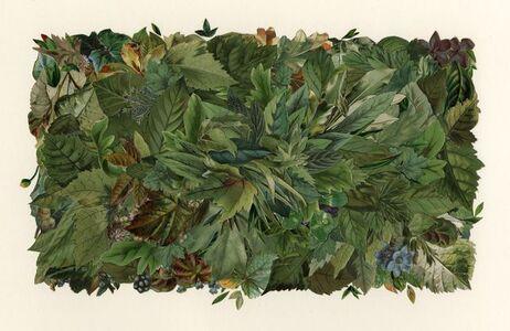 Billy Renkl, 'Leaf Field/Summer', 2019
