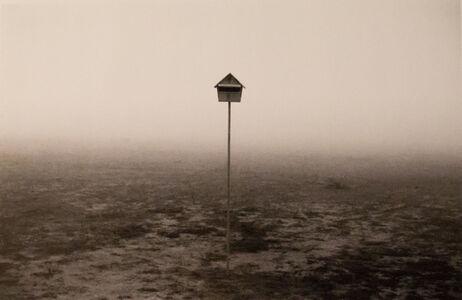 Rui Moreira, 'Sem Título', 1995