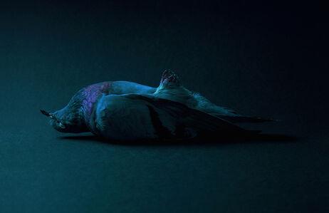 Theo Ellison, 'Entombment   ', 2017