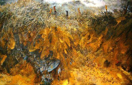 John J. Bedoya, 'Tierra, acrilico, machete y residuos', 2012-2013