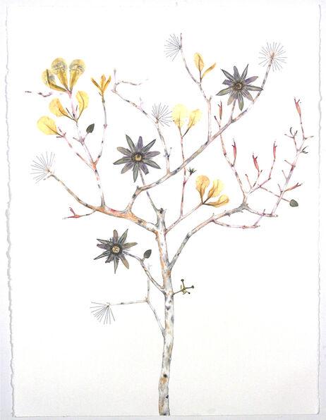 Marilla Palmer, 'Passionflower, Iris and Bee Balm', 2016