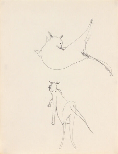 Dorothy Cantor, 'Untitled (cat grooming and walking)', 1955-1957