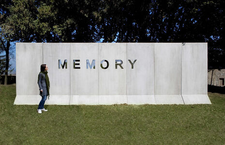 Shilpa Gupta, 'Memory-II', 2008