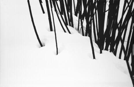 Abbas Kiarostami, 'Snow White', anni 1970