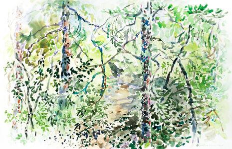 Catherine Perehudoff, 'The Path', 2015