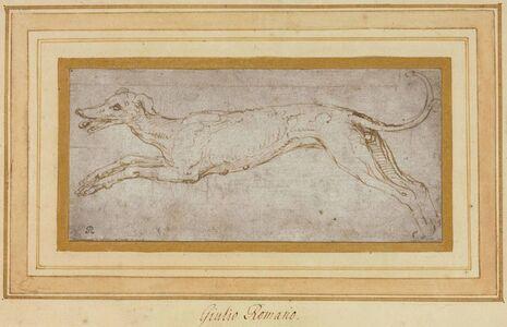 Giulio Romano, 'A leaping hound'