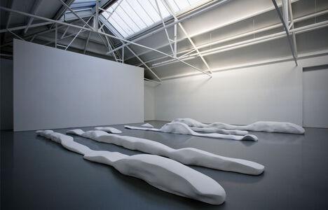 Tom Claassen, 'Untitled (Wormfield)', 2009