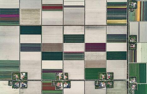 Bernhard Lang, 'Aerial Views, Tulip Fields 01', 2016