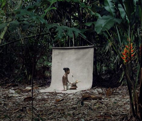 Paradise Found - East Indies Series by Fred Stichnoth, installation view