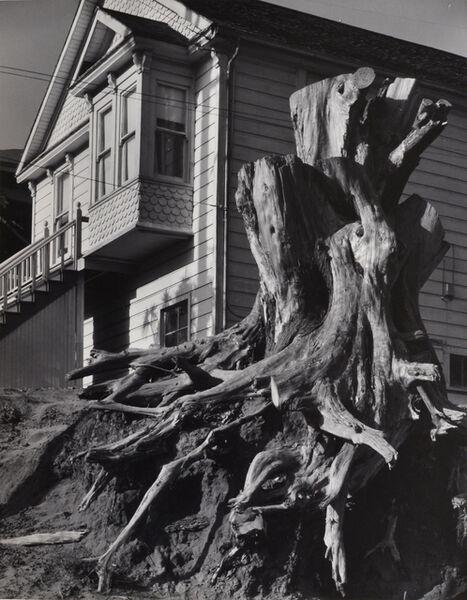 Pirkle Jones, 'Untitled (Tree stump and house)', nd