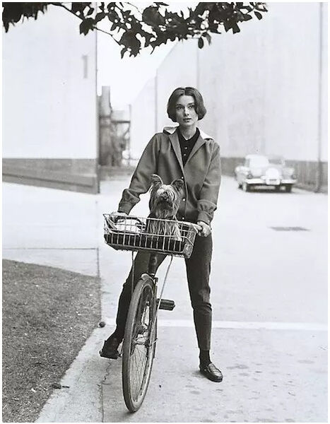 Sid Avery, 'Audrey Hepburn on bike with dog at Paramount Studios', 1975