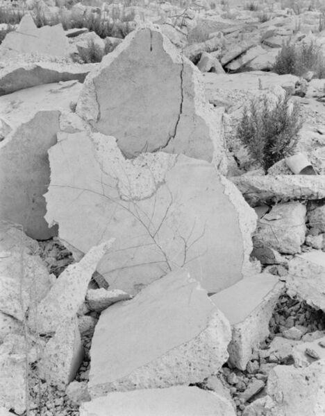 Xavier Ribas, 'Concrete Geographies (Nomads) Nr 2 (2008/17)', 2017