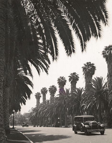Alfred Eisenstaedt, 'Beverly Hills, California', 1936 / 1936