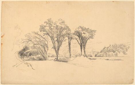 Aaron Draper Shattuck, 'Elms at Stowe, Vermont', 1858