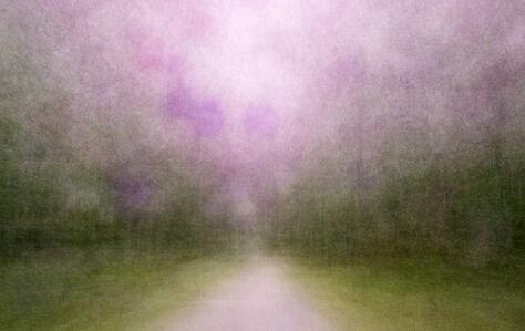 Eeva Karhu, 'Path (Moments) Summer 1', 2019