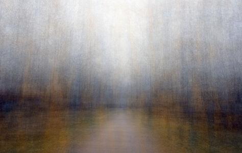 Eeva Karhu, 'Path (Moments) autumn 8 ', 2019