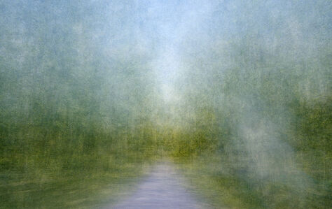 Eeva Karhu, 'Path (Moments) Summer 3', 2019