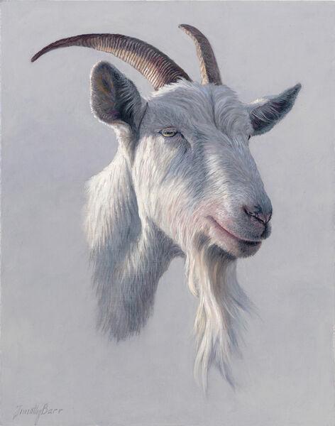 Timothy Barr, 'Goatee', 2017