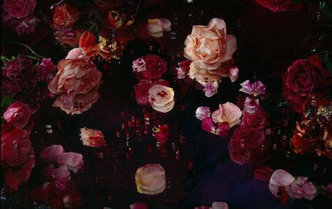 Margriet Smulders, 'Praised be Man', 2010