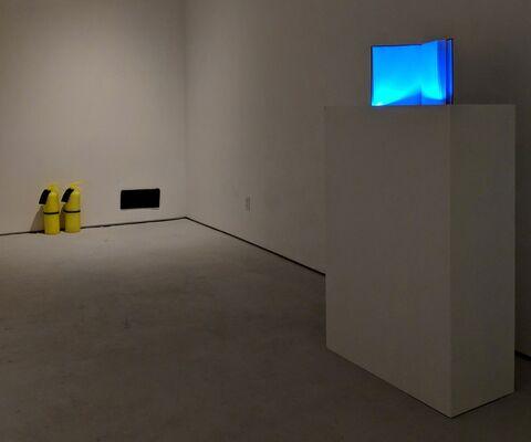 Jeanne Silverthorne, installation view