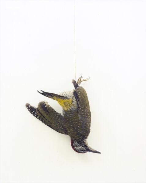 Eric Poitevin, 'Untitled', 2014