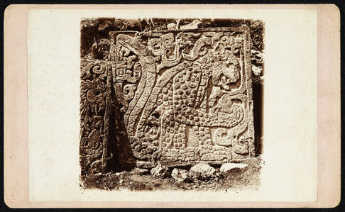 Augustus Le Plongeon, '[Bas-relief of a jaguar eating a heart, Temple of the Eagles and Jaguars, Chich'n Itz]', 1876
