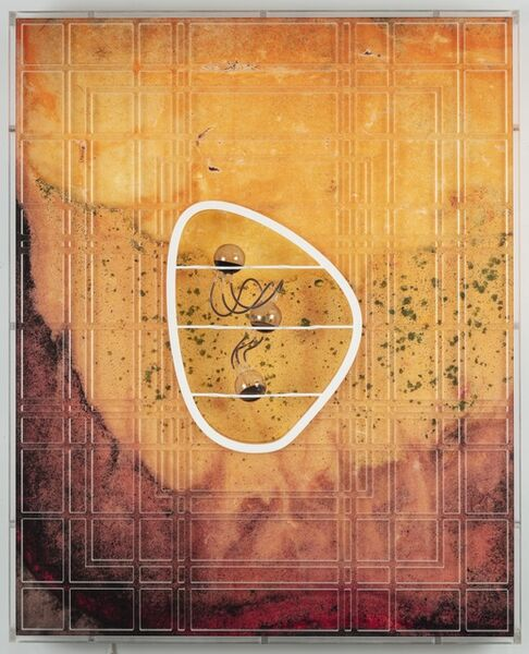 Anicka Yi, 'The Tacit Dimension', 2019