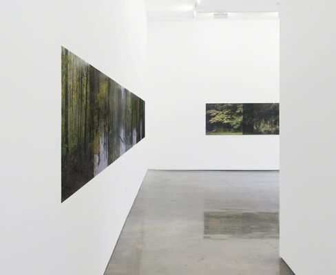 Stephen Berens: From There to Here, installation view