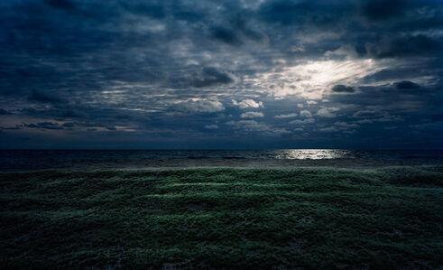 Thomas Wrede, 'Beach Marsh at Night', 2009