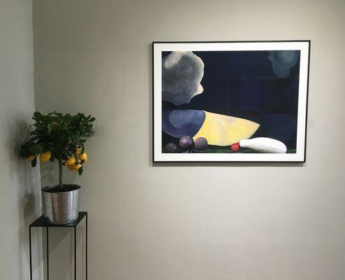 Eden, A season in Paradise / Clark & Pougnaud, installation view