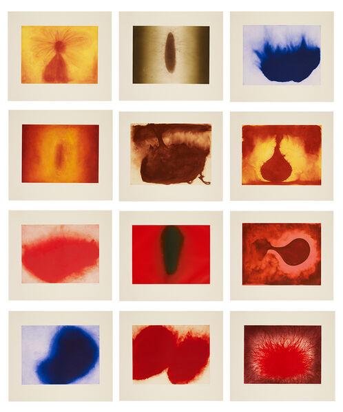 Anish Kapoor, '12 Etchings', 2007