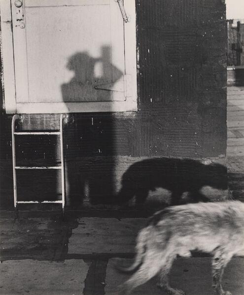"Ilse Bing, 'My Shadow with Dog ""Schubi""', 1948"
