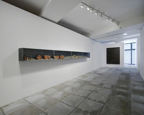Joseph Beuys: Boxkampf für die direkte Demokratie, installation view