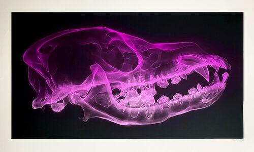 Shok-1, 'Dog Skull (Neon Violet)', 2020