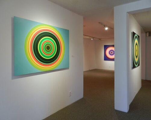 John Holt Smith: Cellular Level, installation view