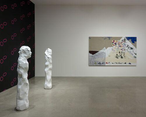 Shezad Dawood: Kalimpong, installation view