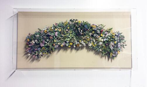 Kerry Miller, 'FAMILIAR WILD FLOWERS,volumes 1-3', 2017