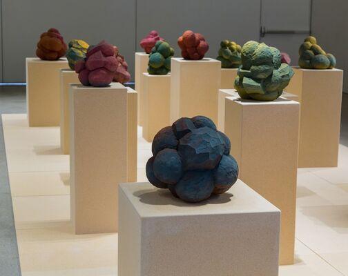 John Shea- Objective, installation view