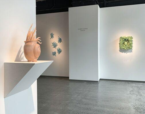 AMBER COWAN | SALACIA  extended thru June 22, installation view