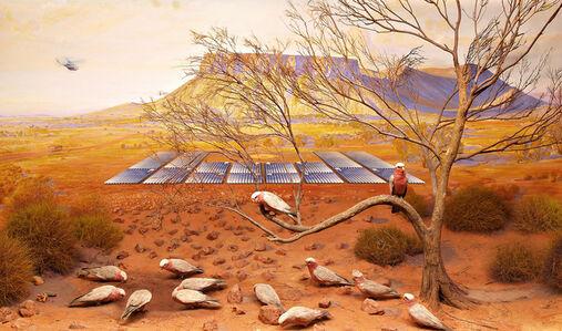 Anne Zahalka, ' Galah, Mt Connor near Uluru, South Australia', 2019