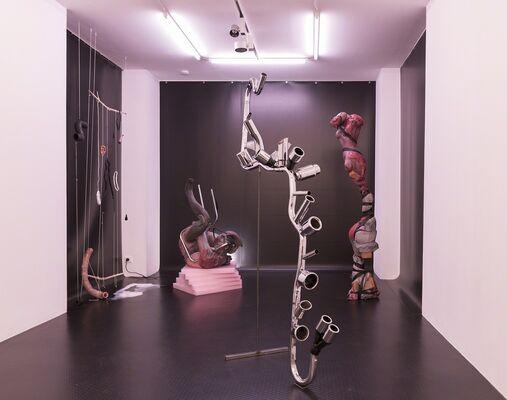 Diego Bianchi, 'Soft Realism', installation view
