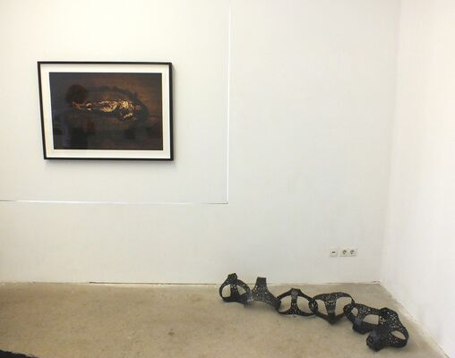Cal Lane: Disobedient Virtues, installation view