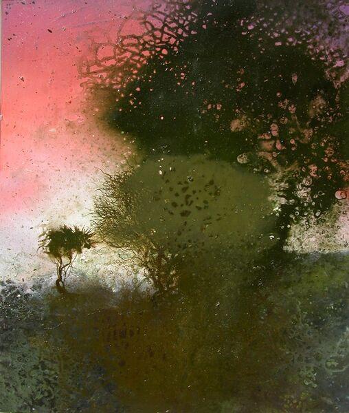 Michael Porter, 'Coastal path 19-04-08', 2008