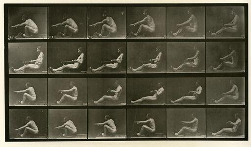 Eadweard Muybridge, 'Animal Locomotion # 492', 1887