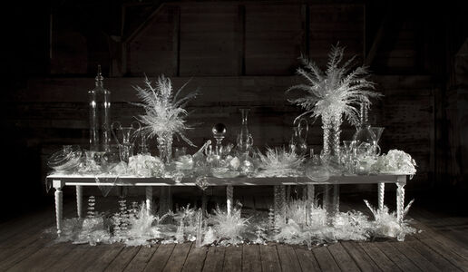 Beth Lipman, 'Laid (Time-) Table with Cycads', 2015