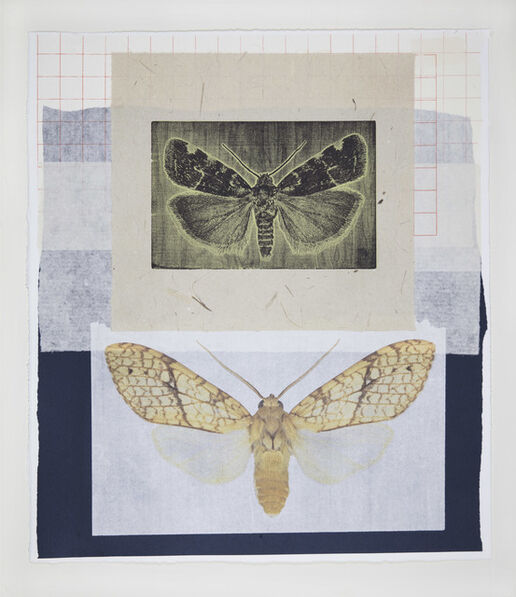 Joseph Scheer, 'Yellow Tiger and Micro Moth', 2019