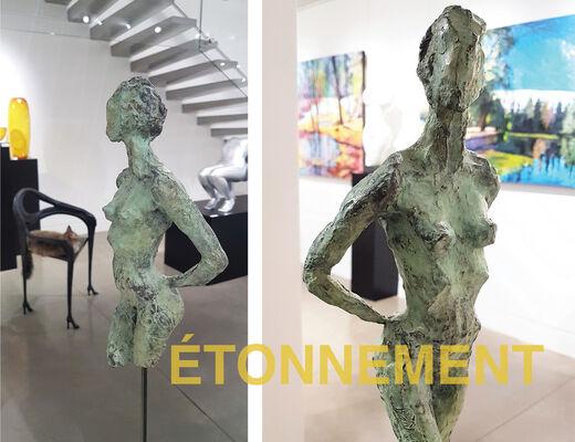ÉTONNEMENT, installation view