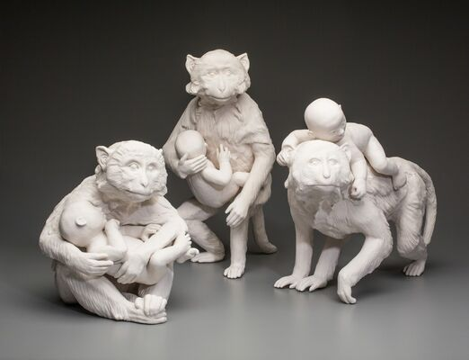 Kate MacDowell-Completely Exposed, installation view